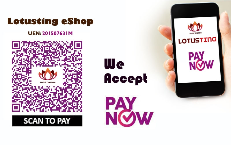 Lotusting eShop accept PayNow
